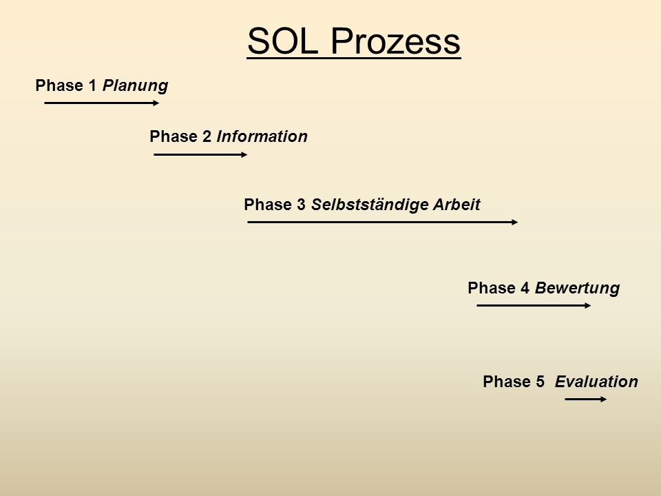 SOL Prozess Phase 1 Planung Phase 2 Information