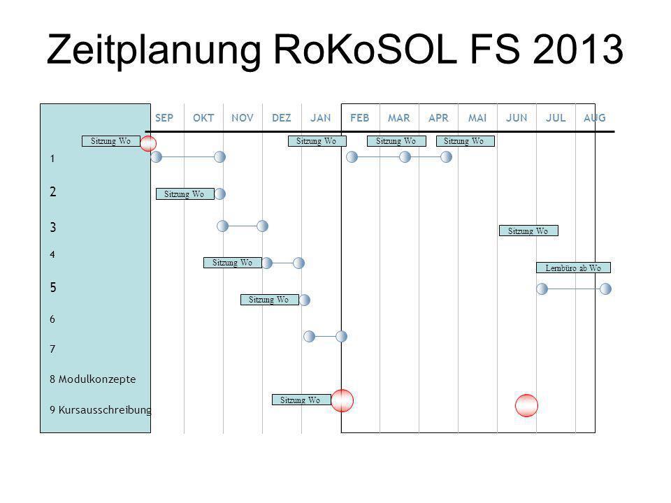 Zeitplanung RoKoSOL FS 2013
