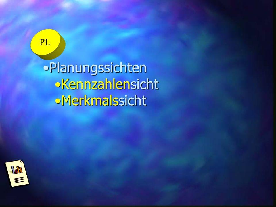 PL Planungssichten Kennzahlensicht Merkmalssicht
