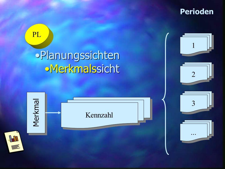 2 1 3 ... Perioden PL Planungssichten Merkmalssicht Merkmal Kennzahl