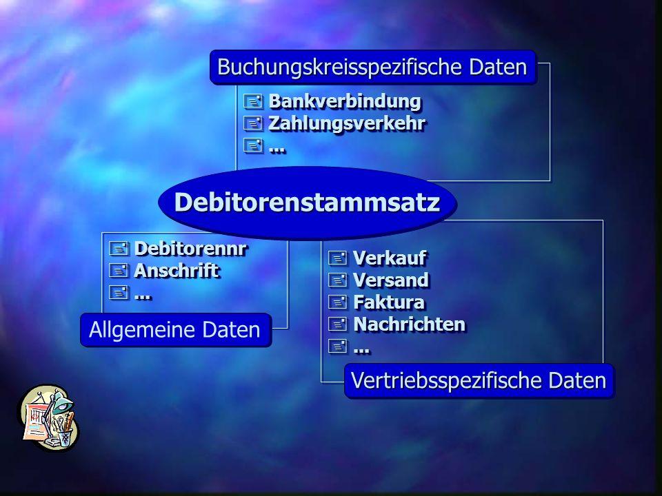 Debitorenstammsatz Buchungskreisspezifische Daten Allgemeine Daten