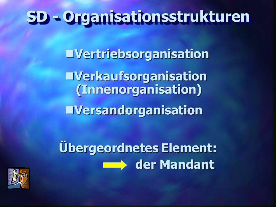 SD - Organisationsstrukturen