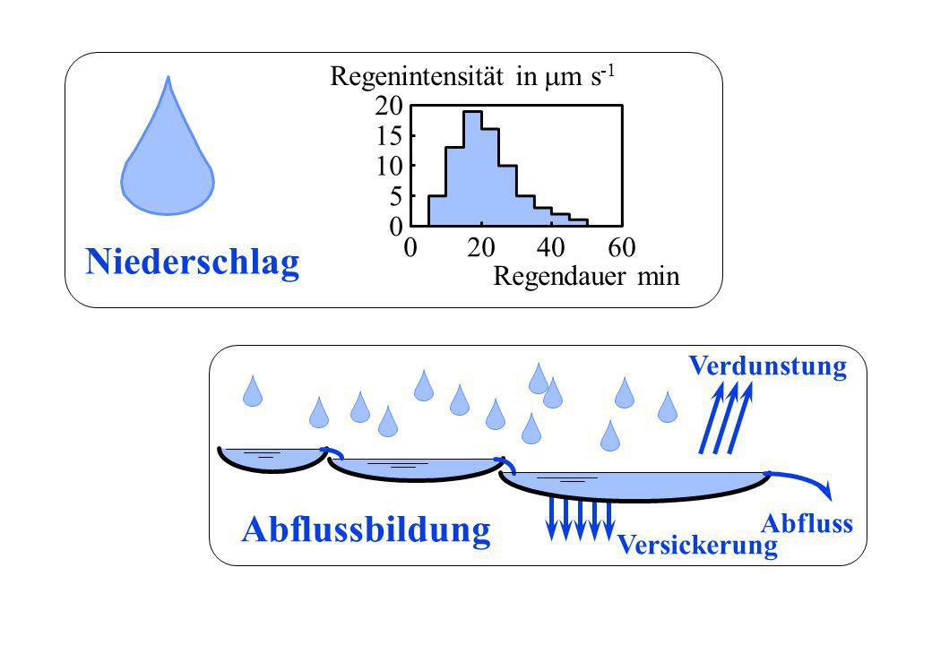 Niederschlag Abflussbildung