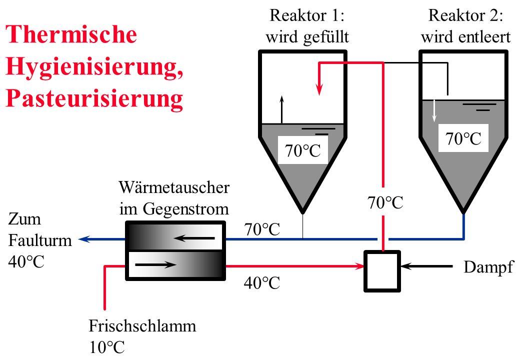Thermische Hygienisierung, Pasteurisierung