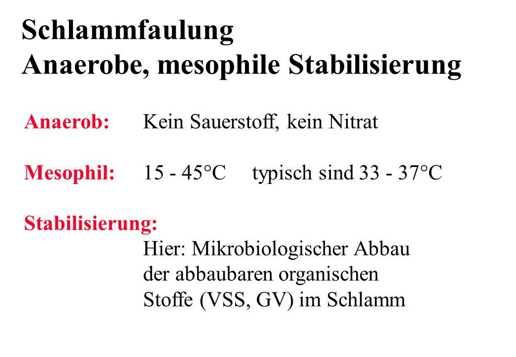 Schlammfaulung Anaerobe, mesophile Stabilisierung