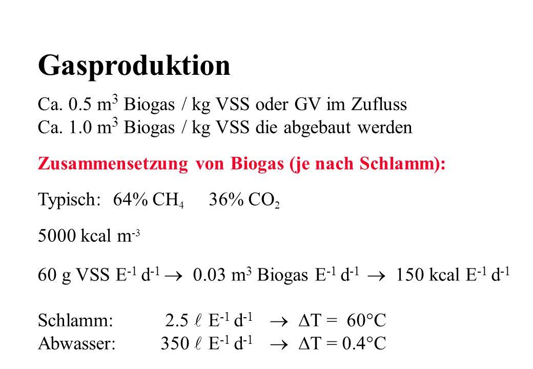 Gasproduktion Ca. 0.5 m3 Biogas / kg VSS oder GV im Zufluss