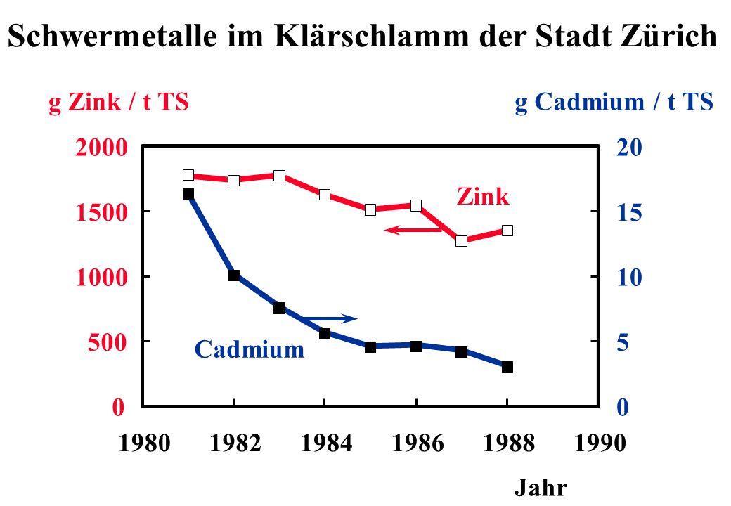 Schwermetalle im Klärschlamm der Stadt Zürich