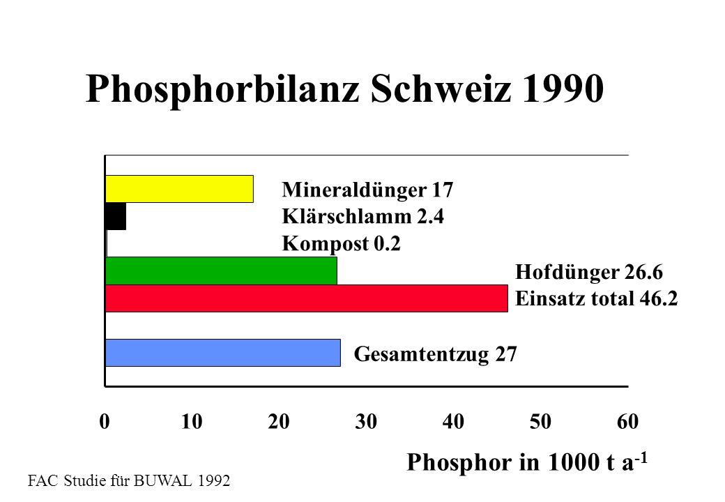 Phosphorbilanz Schweiz 1990