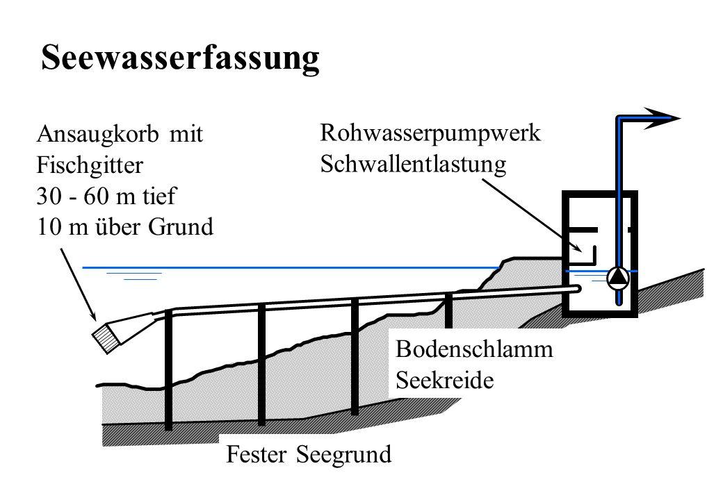 Seewasserfassung Ansaugkorb mit Rohwasserpumpwerk Fischgitter