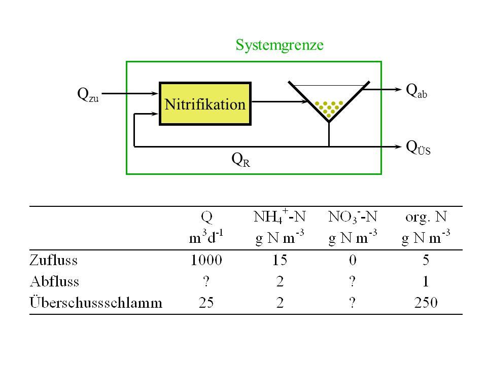 Systemgrenze Qab Qzu Nitrifikation QÜS QR