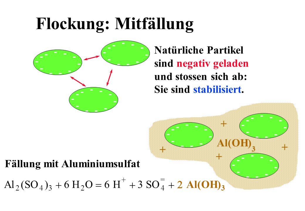 Flockung: Mitfällung Natürliche Partikel sind negativ geladen