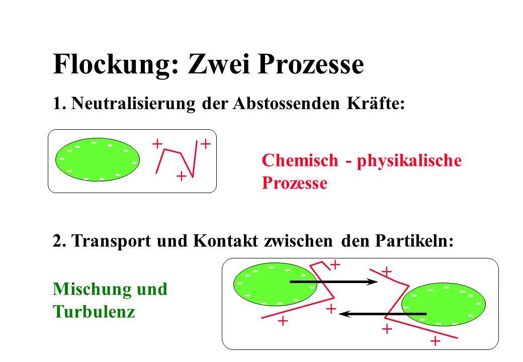 Flockung: Zwei Prozesse