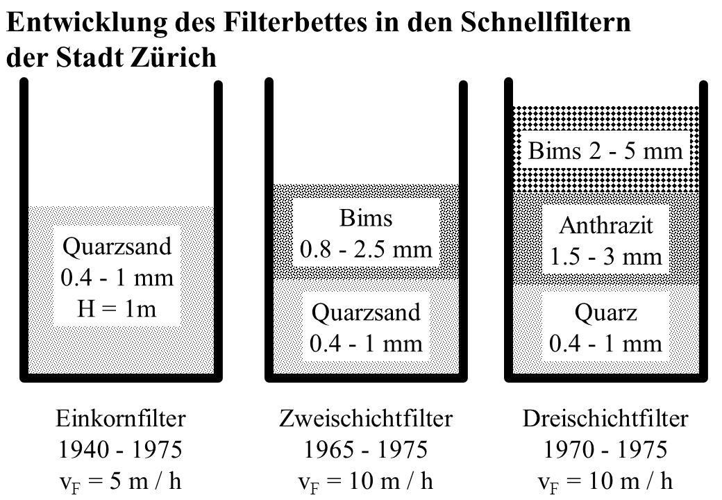 Entwicklung des Filterbettes in den Schnellfiltern der Stadt Zürich