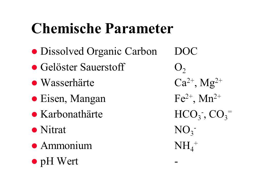 Chemische Parameter Dissolved Organic Carbon DOC