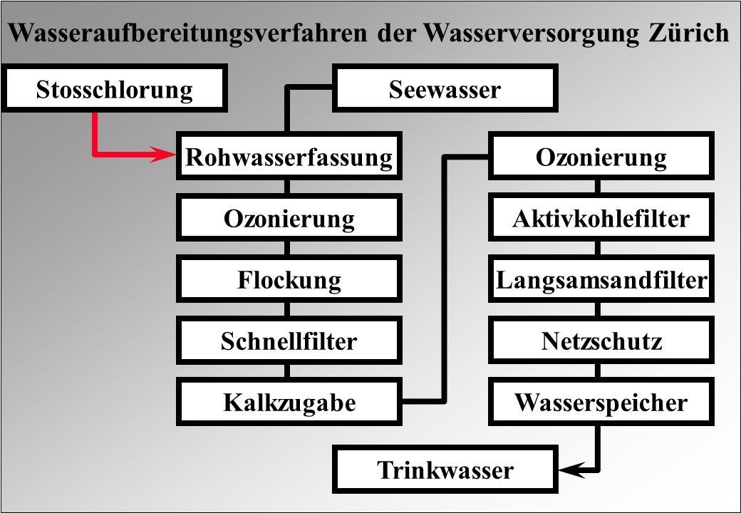 Wasseraufbereitungsverfahren der Wasserversorgung Zürich