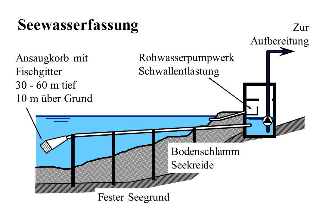 Seewasserfassung Zur Aufbereitung Ansaugkorb mit Rohwasserpumpwerk