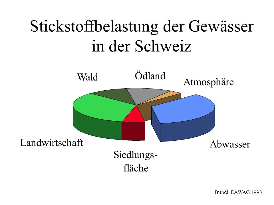 Stickstoffbelastung der Gewässer in der Schweiz