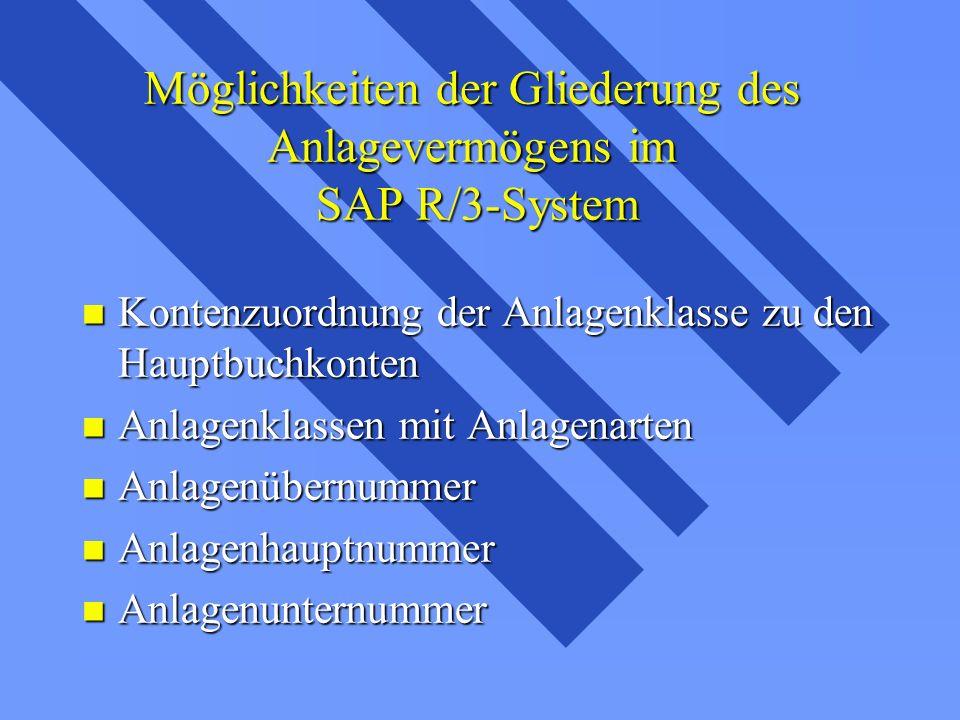 Möglichkeiten der Gliederung des Anlagevermögens im SAP R/3-System