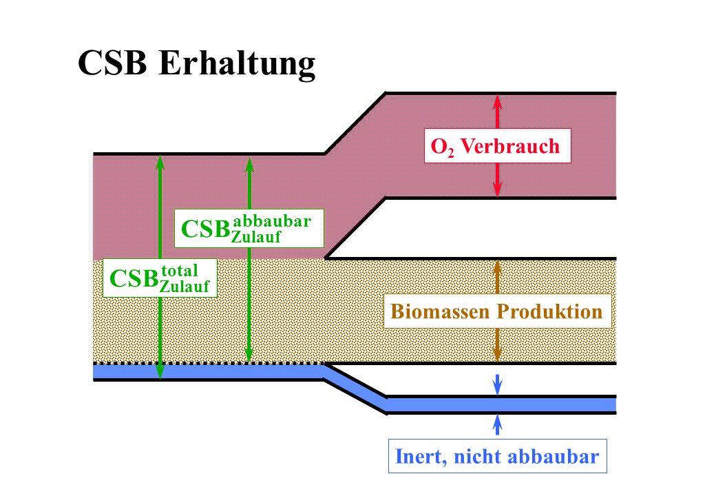 CSB Erhaltung CSBZulauf O2 Verbrauch Biomassen Produktion