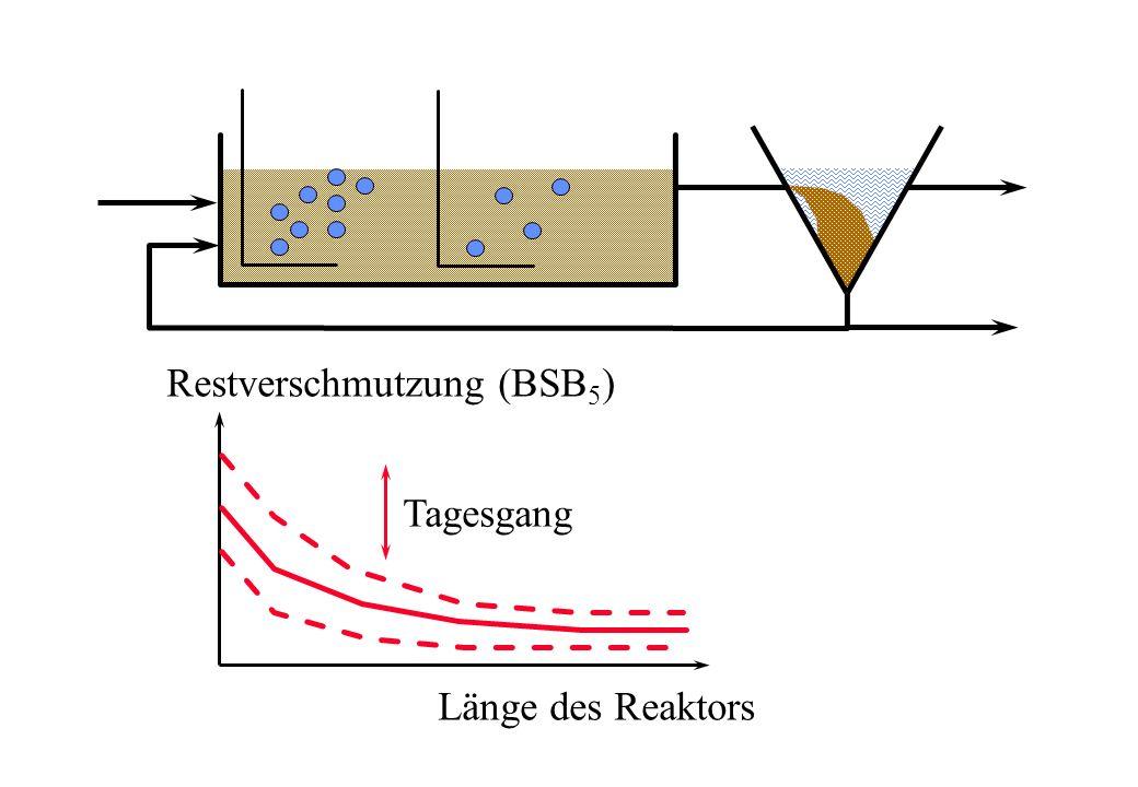 Restverschmutzung (BSB5)