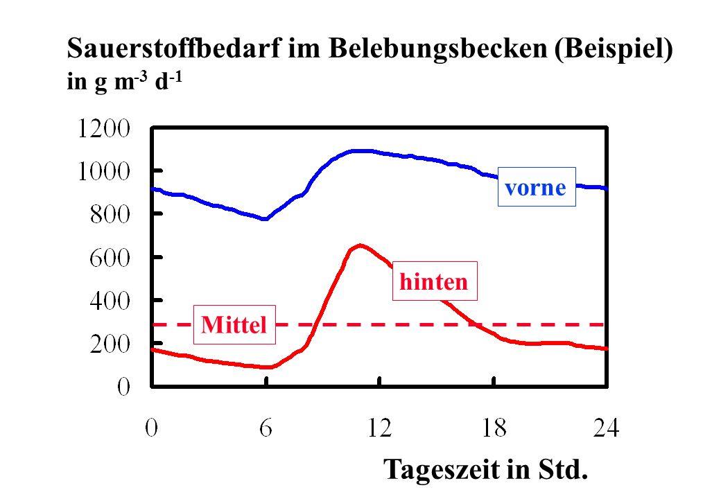 Sauerstoffbedarf im Belebungsbecken (Beispiel)