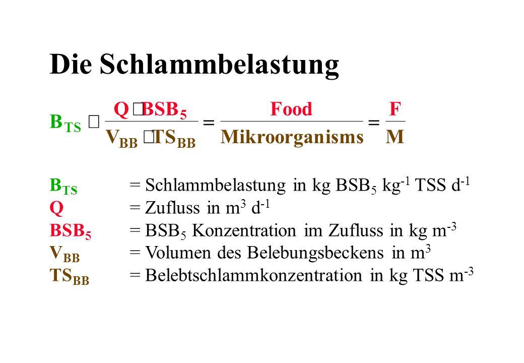 Die Schlammbelastung B Q BSB V TS Food Mikroorgan isms F M º × =