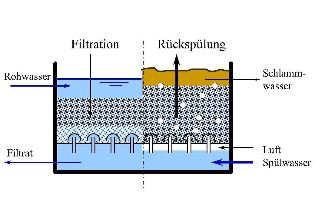 Filtration Rückspülung Schlamm- Rohwasser wasser Luft Filtrat