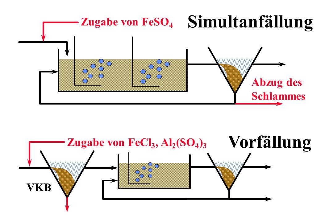 Simultanfällung Vorfällung Zugabe von FeSO4 Abzug des Schlammes