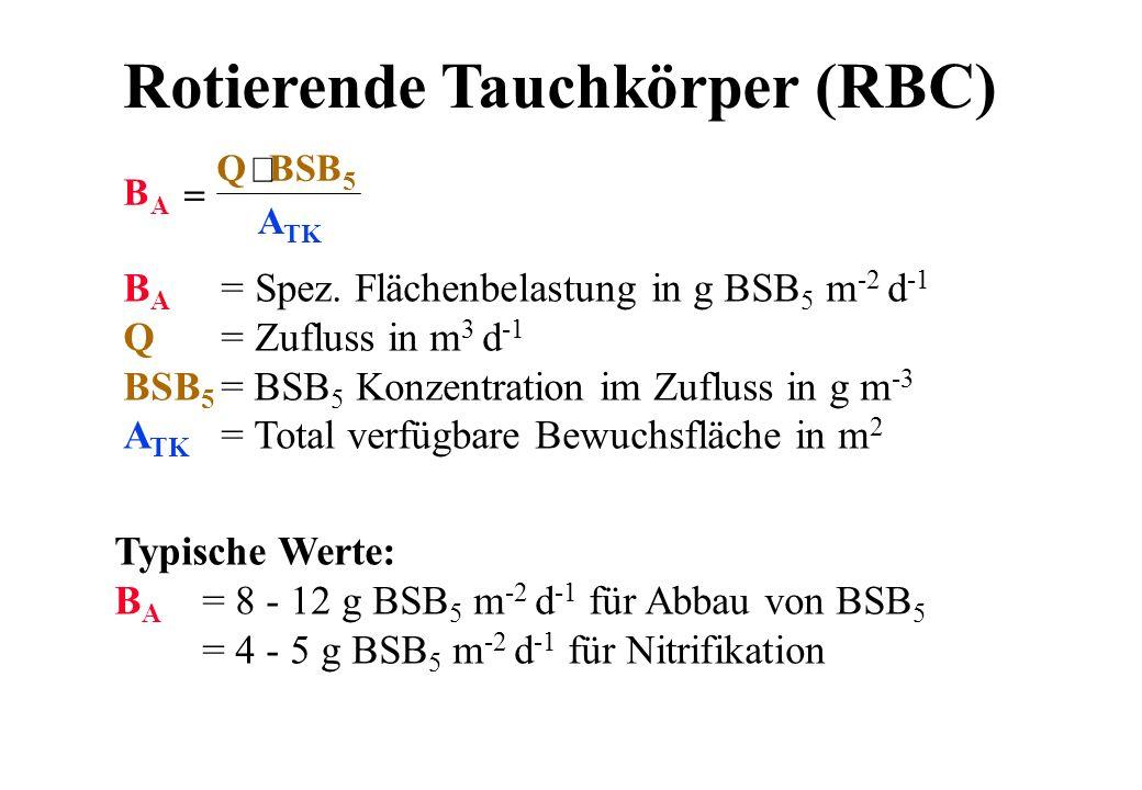 Rotierende Tauchkörper (RBC)