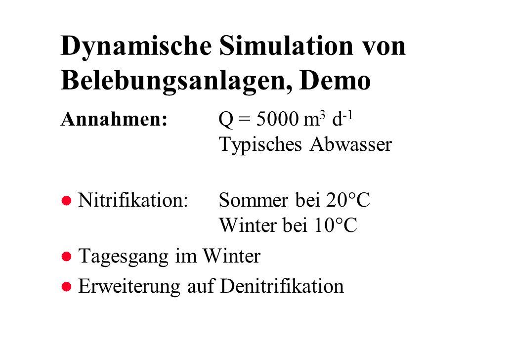 Dynamische Simulation von Belebungsanlagen, Demo
