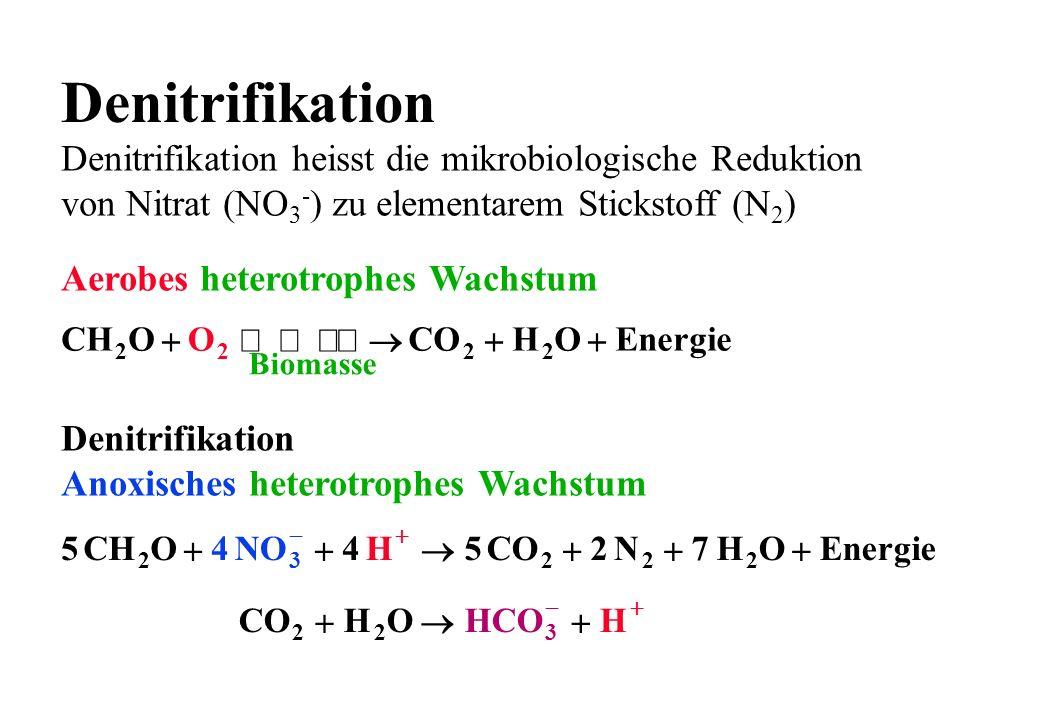 Denitrifikation Denitrifikation heisst die mikrobiologische Reduktion