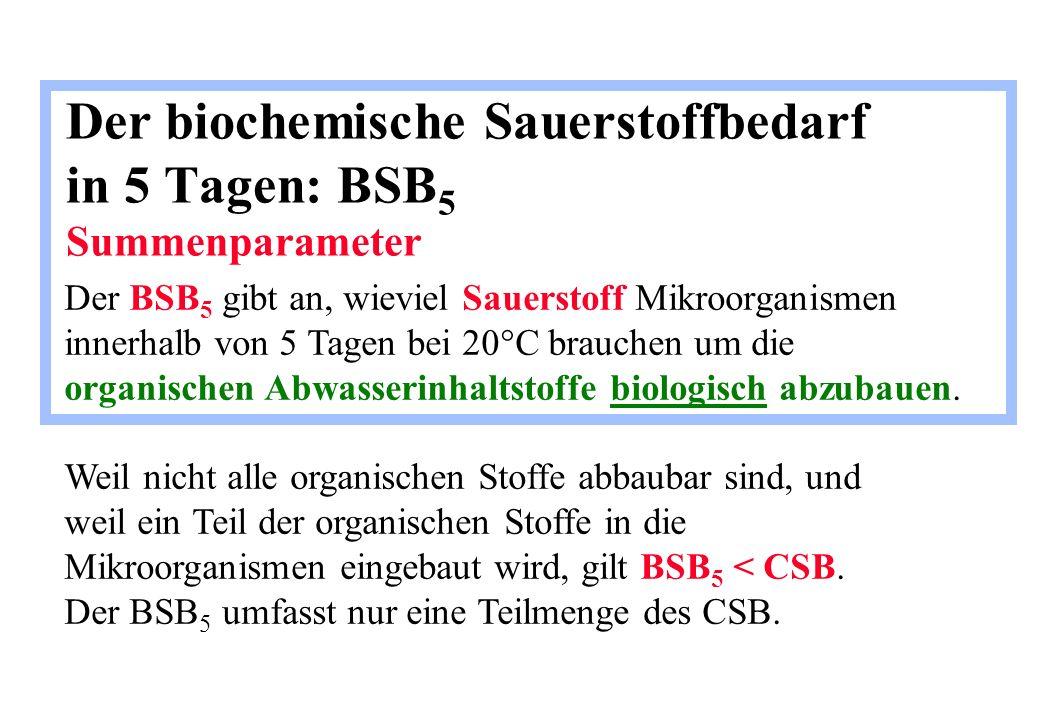 Der biochemische Sauerstoffbedarf in 5 Tagen: BSB5 Summenparameter