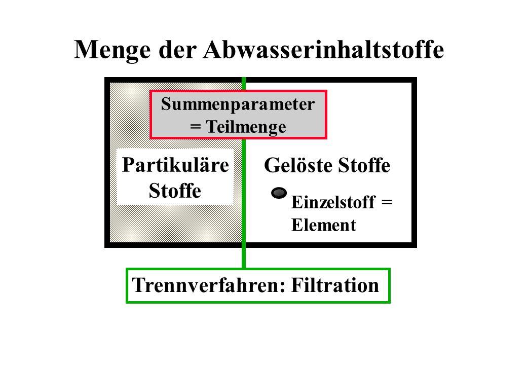 Menge der Abwasserinhaltstoffe