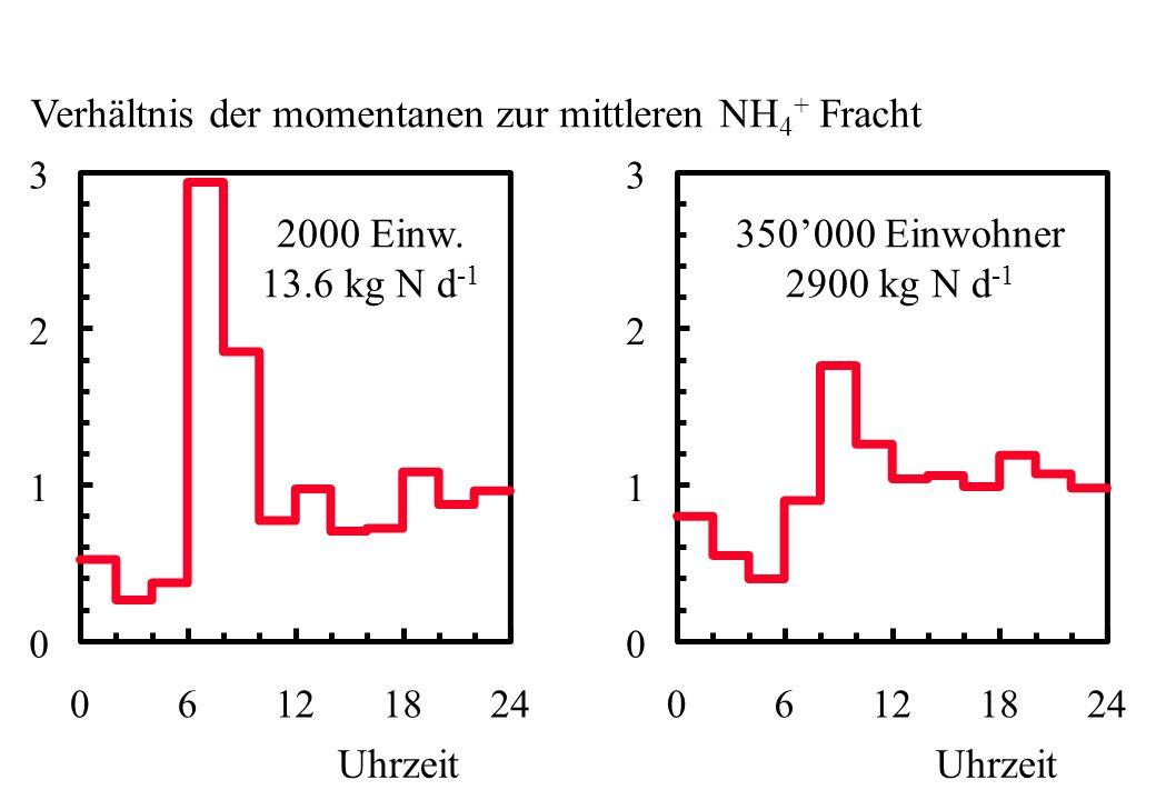 Verhältnis der momentanen zur mittleren NH4+ Fracht