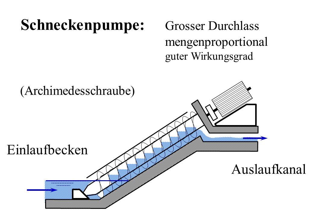 Schneckenpumpe: Grosser Durchlass