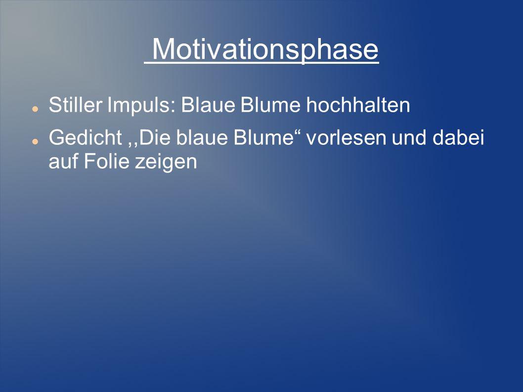 Motivationsphase Stiller Impuls: Blaue Blume hochhalten