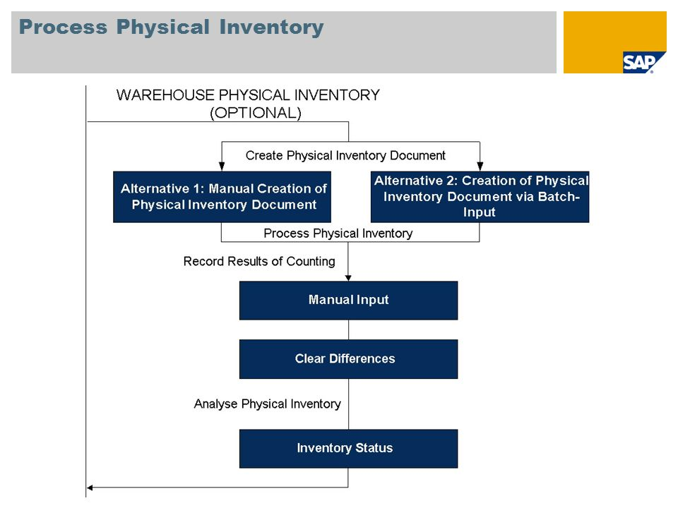Process Physical Inventory