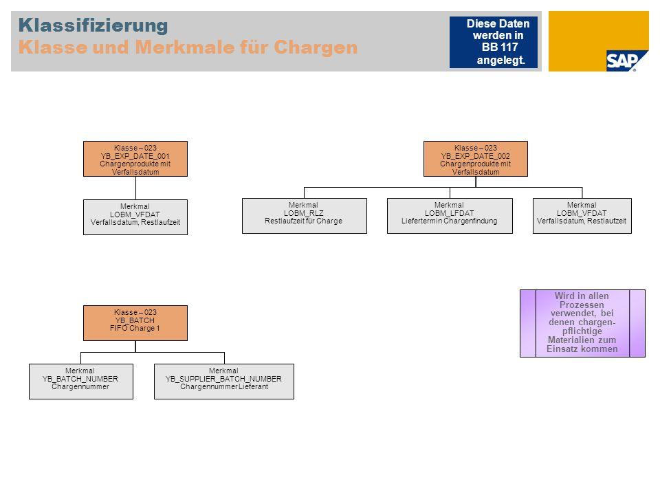 Klassifizierung Klasse und Merkmale für Chargen