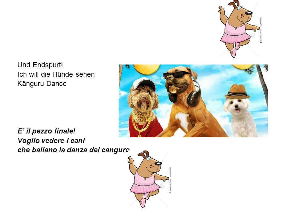 Und Endspurt! Ich will die Hünde sehen. Känguru Dance. E' il pezzo finale! Voglio vedere i cani.