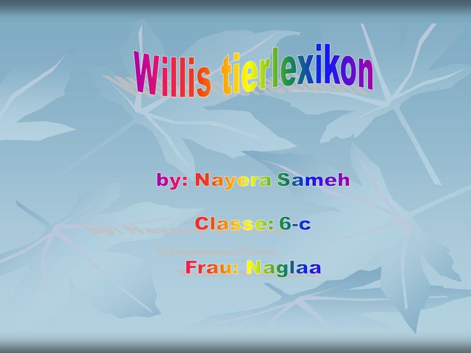Willis tierlexikon by: Nayera Sameh Classe: 6-c Frau: Naglaa