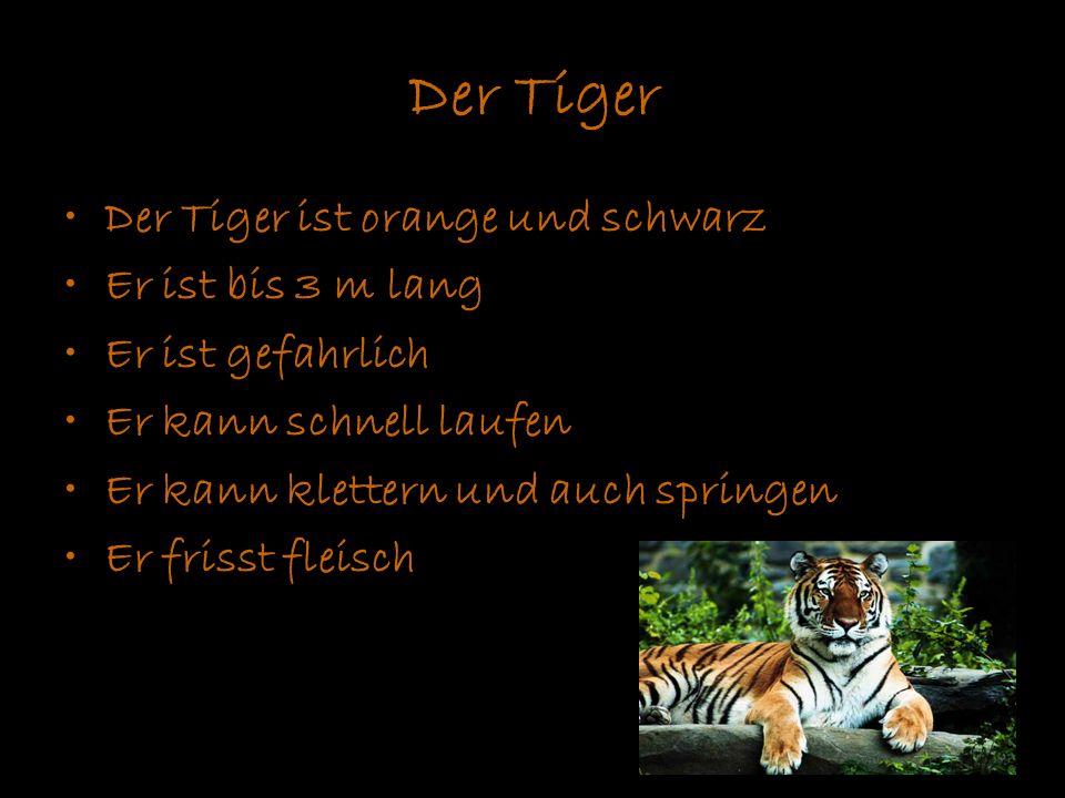 Der Tiger Der Tiger ist orange und schwarz Er ist bis 3 m lang