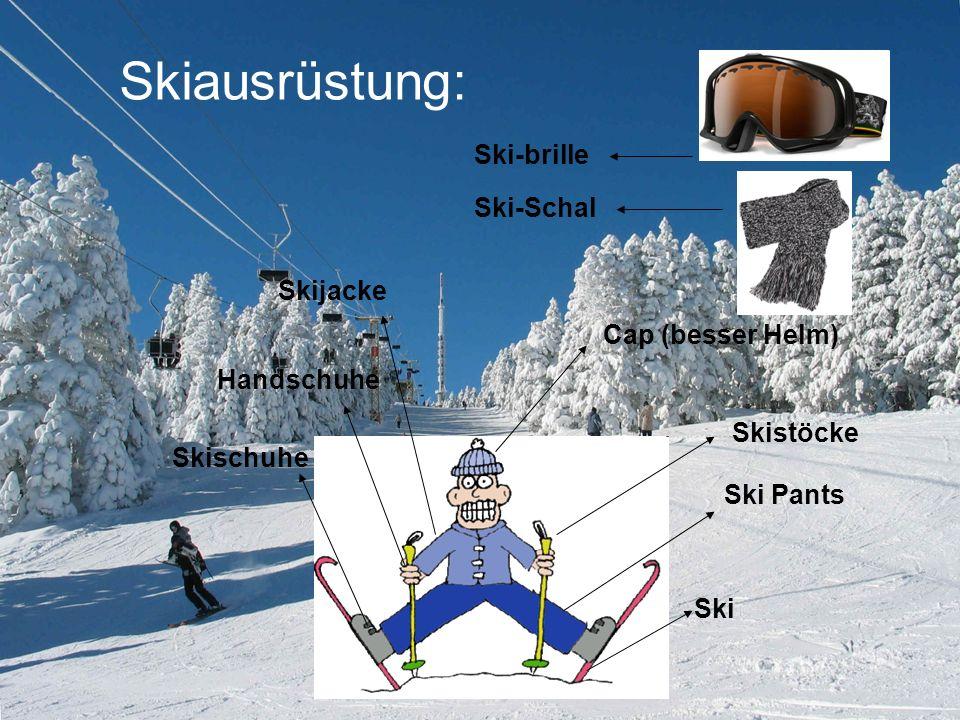 Skiausrüstung: Ski-brille Ski-Schal Skijacke Cap (besser Helm)