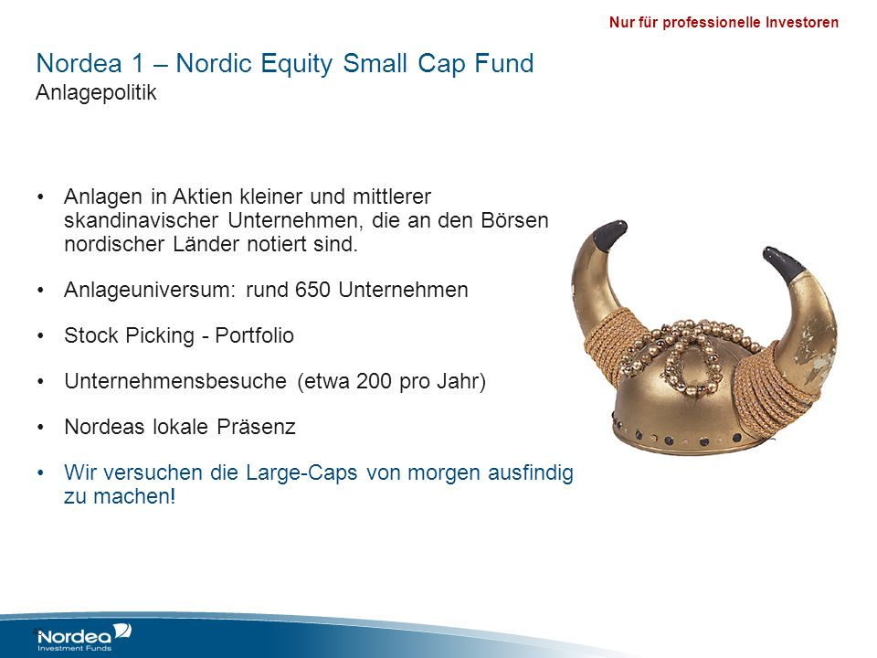 Nordea 1 – Nordic Equity Small Cap Fund Anlagepolitik