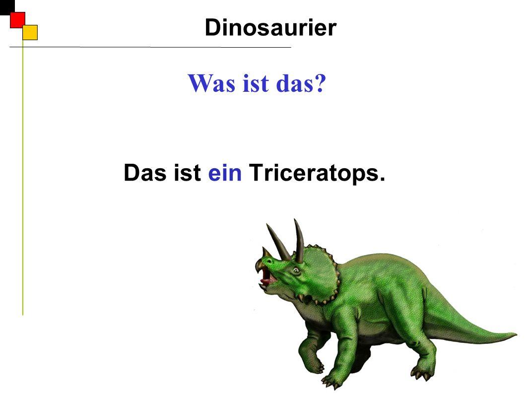 Das ist ein Triceratops.