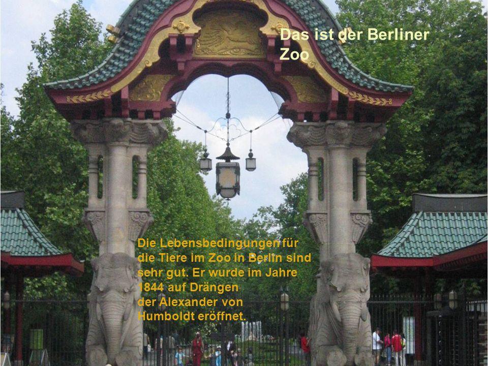 Das ist der Berliner Zoo