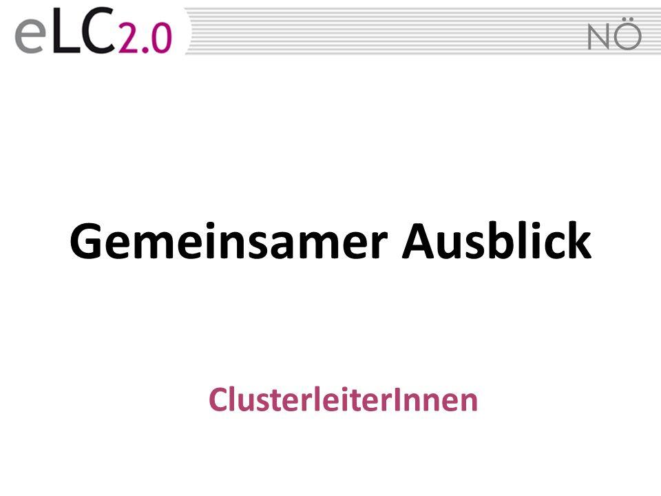 Gemeinsamer Ausblick ClusterleiterInnen