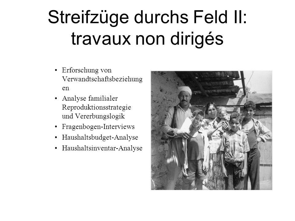 Streifzüge durchs Feld II: travaux non dirigés