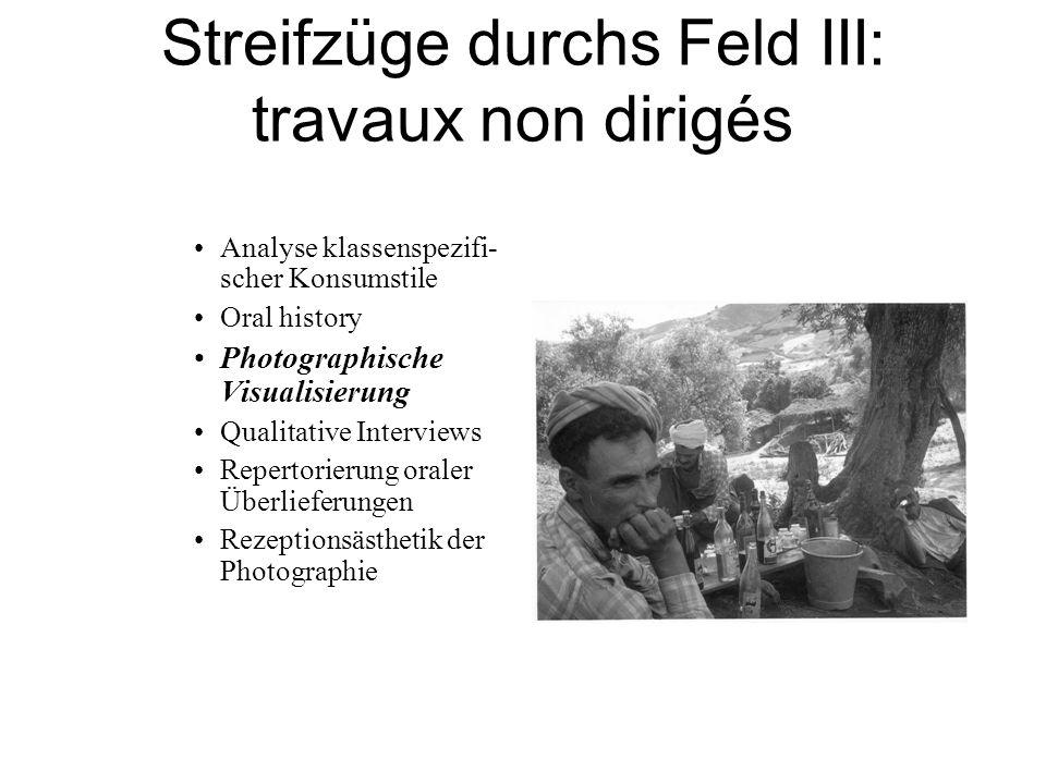 Streifzüge durchs Feld III: travaux non dirigés