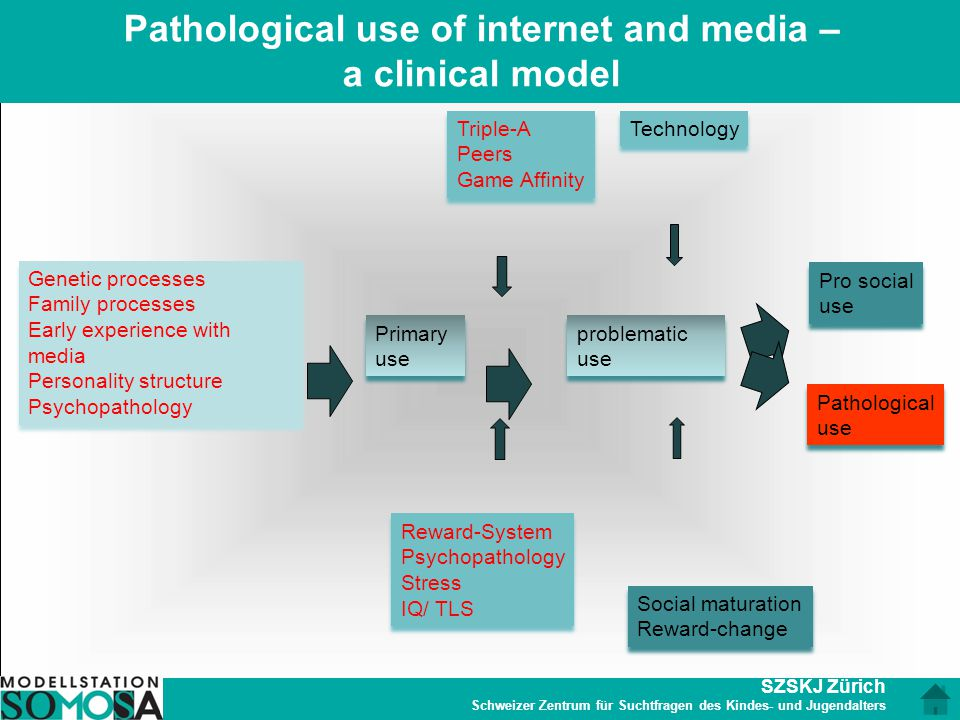 Pathological use of internet and media – a clinical model