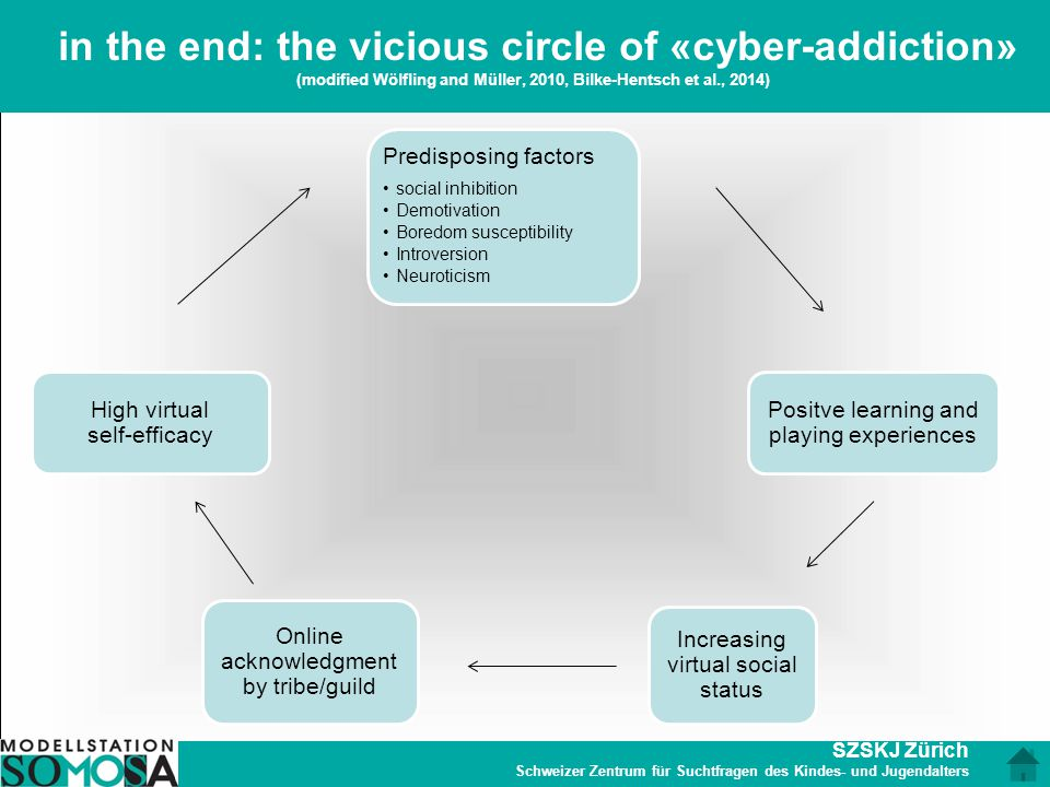 in the end: the vicious circle of «cyber-addiction» (modified Wölfling and Müller, 2010, Bilke-Hentsch et al., 2014)